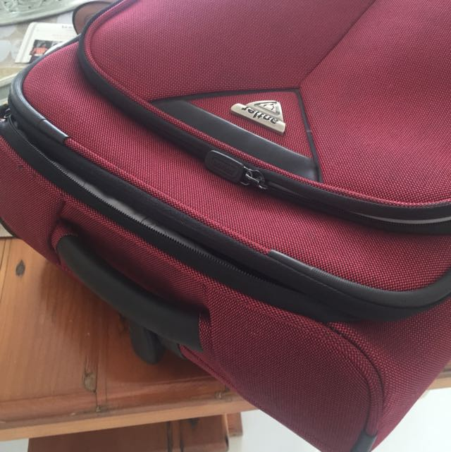 Used antler Carryon Case