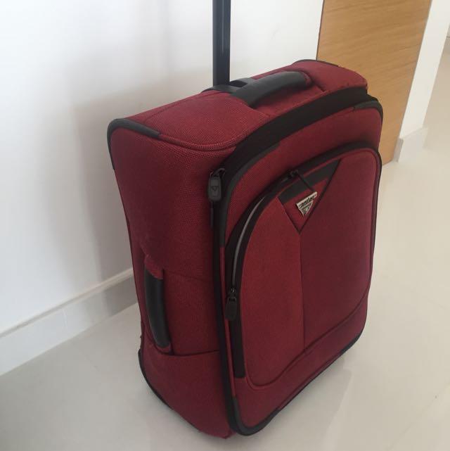 Used antler Carryon Case