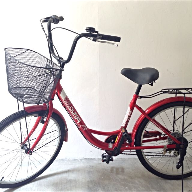 Bicycle with basket and rear carrier