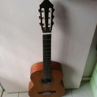 Walden N570 Classical Solid Top Guitar