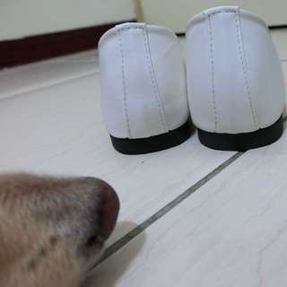 尖頭平底娃娃鞋