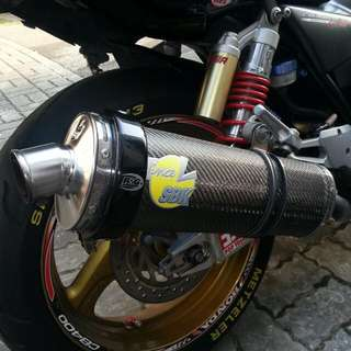 Leo Vince exhaust with R&G Exhaust Protector