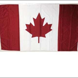 加拿大國旗旗面/楓葉 紅白