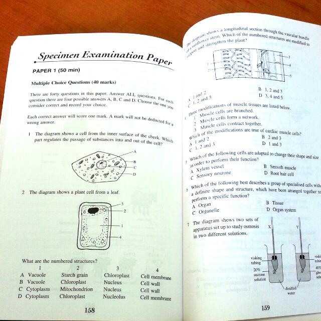 Nucleus study guide answers dsc 0299 array longman o level biology quick study guide books u0026 stationery rh sg carousell com fandeluxe Gallery