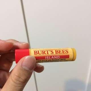 Burts Bees護唇膏