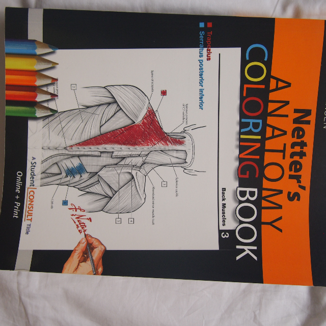 Netter\'s Anatomy Coloring Book (J.T. Hansen)
