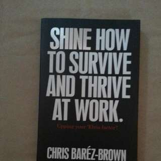 Shine How To Survive And Thrive At Work-Chris Barez-Brown