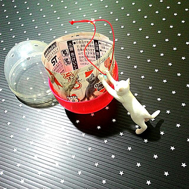 (已客訂)貓咪捲線器