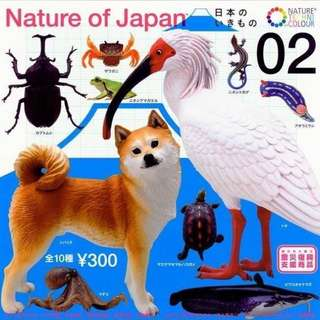 【扭蛋轉蛋】日本自然生命 Nature  of Japan 第2彈