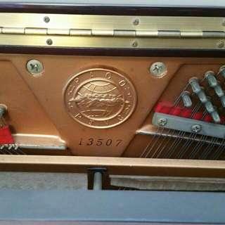 Paco Piano Pu-120cmp