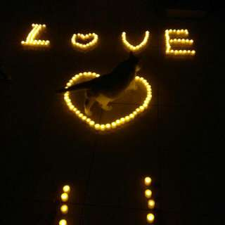 浪漫💝蠟燭燈💎