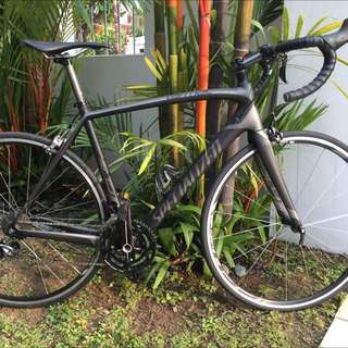 Specialized Bicycle (Carbon)