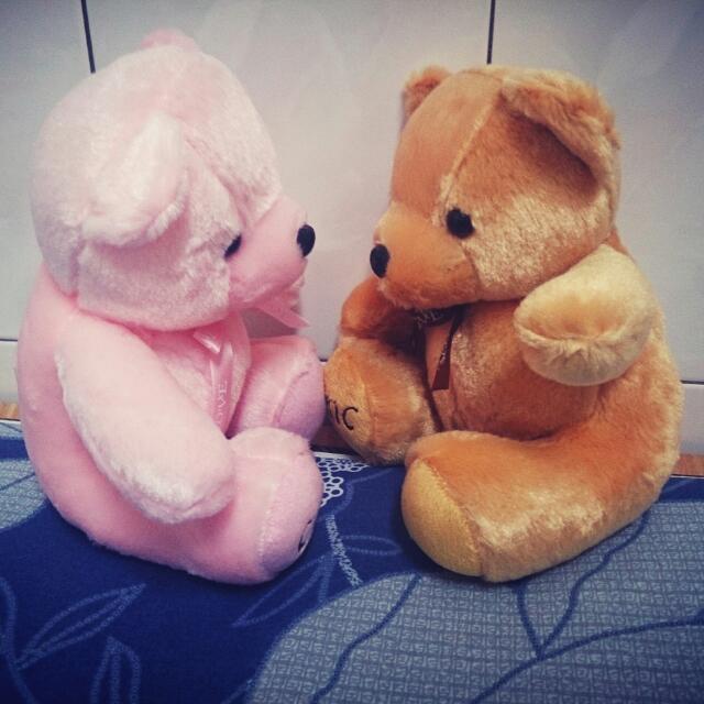 [贈品]情侶小熊