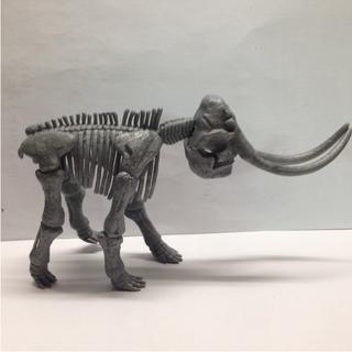 冰河時期 長毛象 骨頭模型 扭蛋 絕版好物