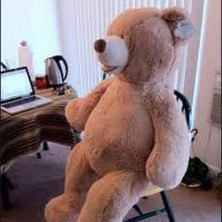 (待匯款)Costco 大熊140cm