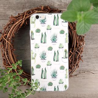D003 Cactus