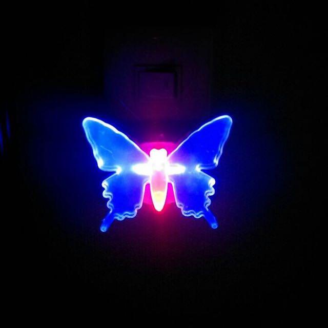 蝴蝶夜光燈