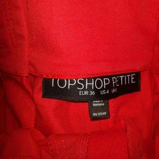 ( REDUCED) TOPSHOP SKIRT -NO POSTAGE FEE-