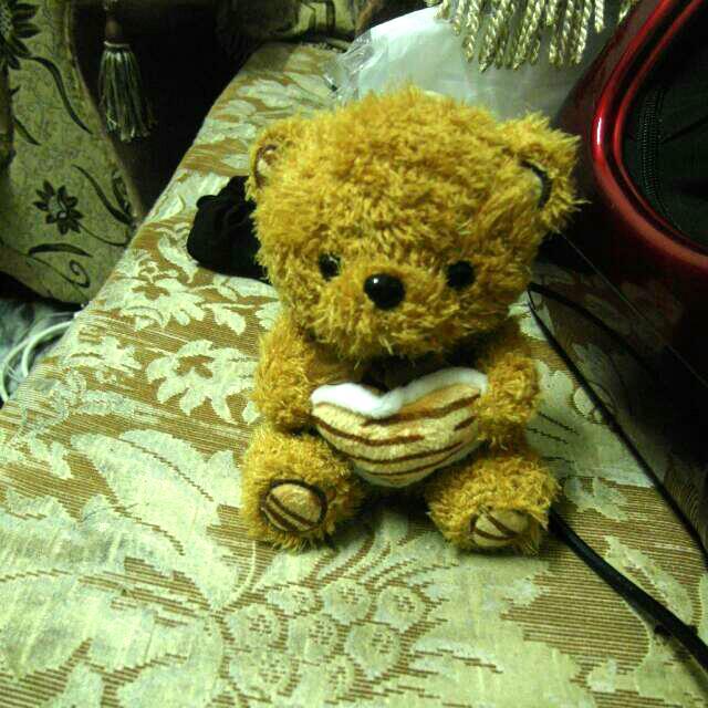 咖啡色小熊