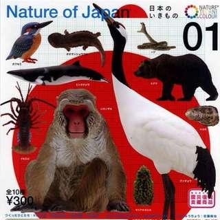 【扭蛋轉蛋】日本自然生命 1代 Nature of Japan P1