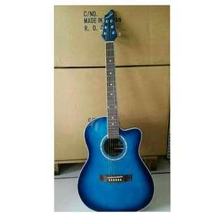 吉他(初級。入門款)