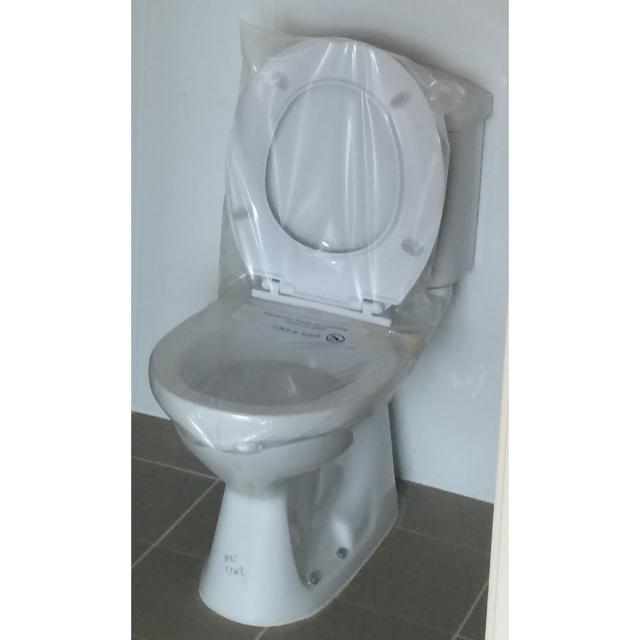 Unused BTO Master Bedroom Toilet Vanity Basin + Hand Shower + WC ...