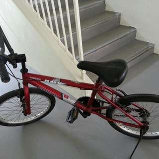 """20"""" BMX Bicycle for $40."""