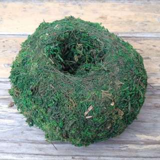 Moss Ball - Planter Large.