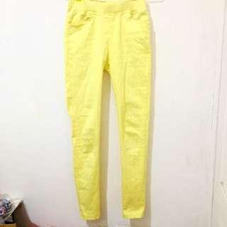黃色 鉛筆褲 小腳褲 長褲 色褲