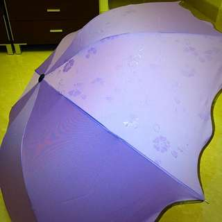 Creative Umbrella   遇水开花
