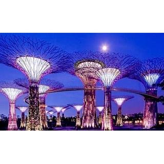 新加坡濱海灣花園 大人480元  雲霧林、花穹雙館 環球影城、海洋館