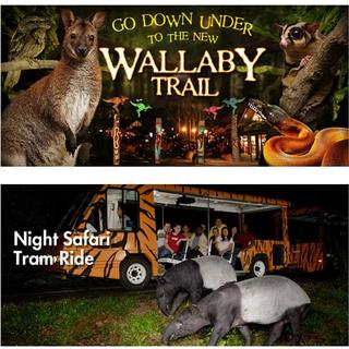 【新加坡夜間動物園 大人880元】環球影城、夜間動物園、金沙酒店、機票