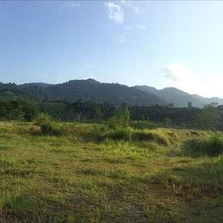 Land In Langkawi By Main Road