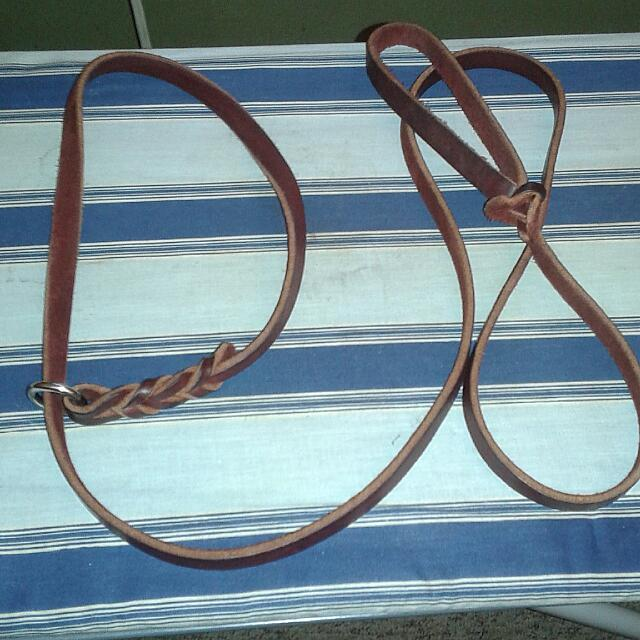 Noose Leather Leash