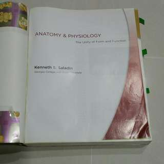 Anatomy & Physiology (Fourth Edition)