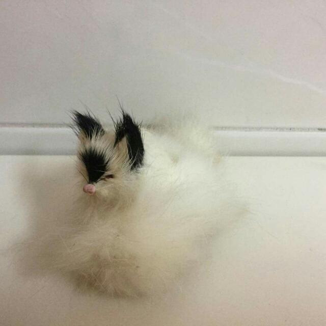 【贈品】迷你貓咪娃娃擺飾