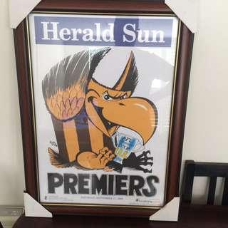 Hawthorn 2008 Herald Sun