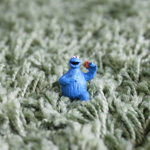 Cookie公仔 芝麻街 餅乾