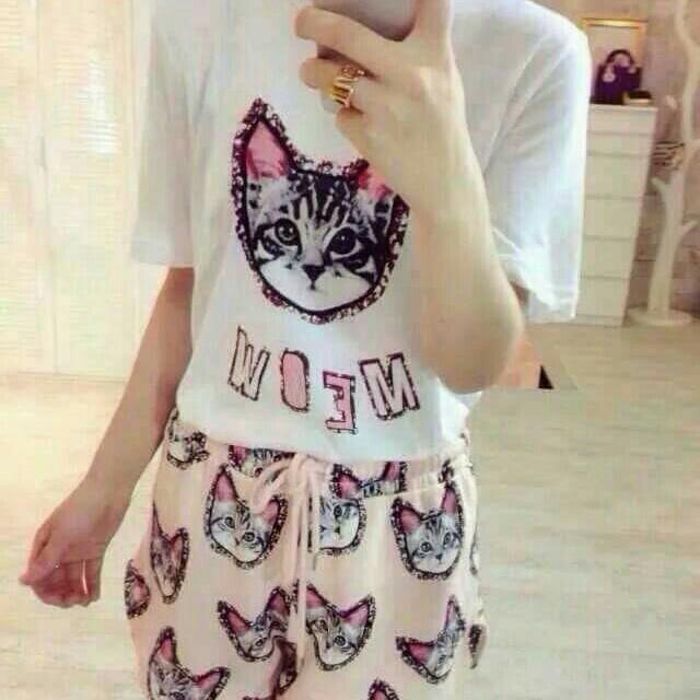 韓版貓咪套裝