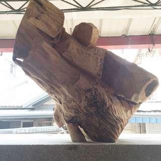 台灣珍貴牛樟木 太極
