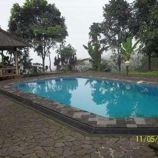 Villa Delphia Resort And Highland - Puncak