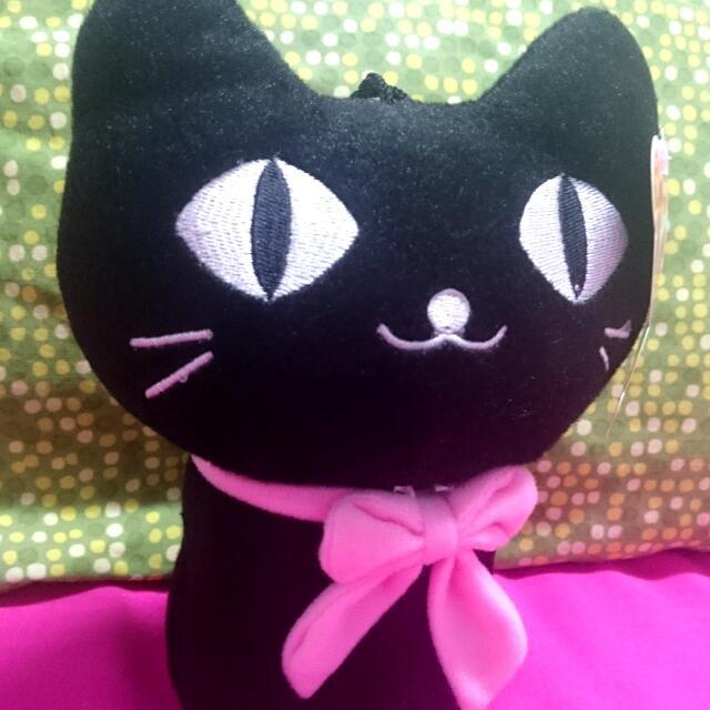 黑色小貓咪布偶 😺 🐾