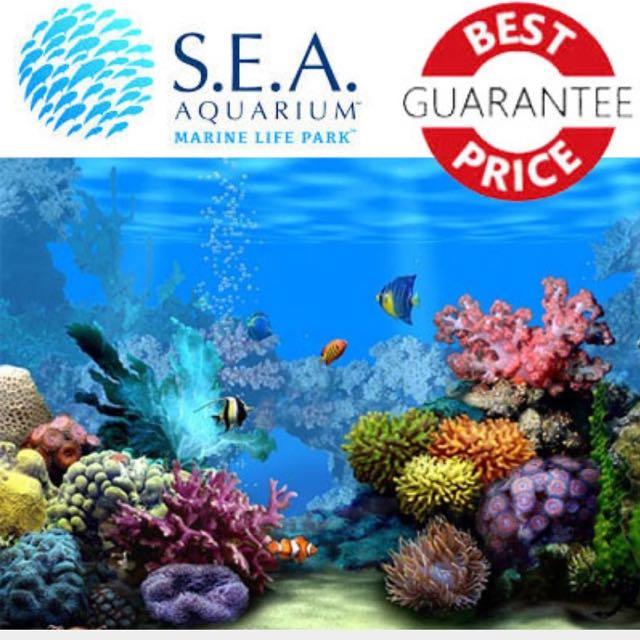 SEA Aquarium Tickets