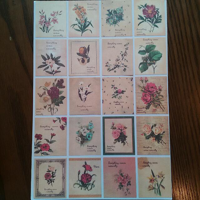 復古味 花卉,小清新, 鄉村風 紙貼紙 韓國製