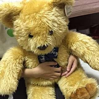 泰迪熊  可抱抱的大型娃娃  約100公分 全新
