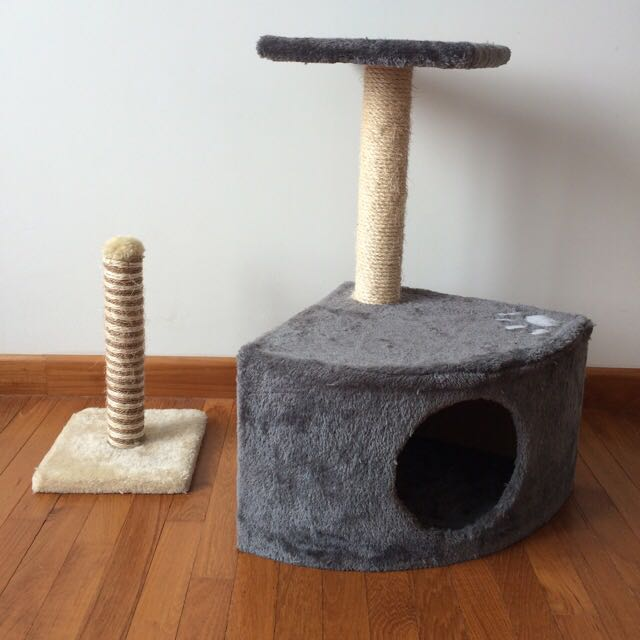 Cat Tree And Scratching Pole