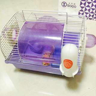 寵物鼠飼養籠子 外出鼠籠