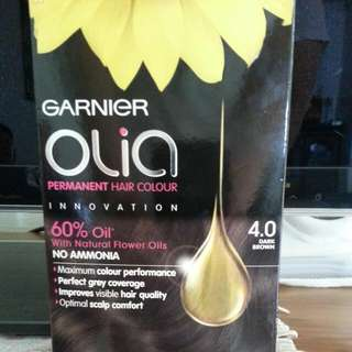 Garnier Hair Colour In Dark Brown 4.0