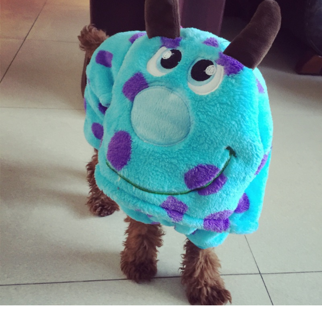 photo photo ... & Monster Inc Sully Dog T-Shirt Costume Pet Supplies on Carousell