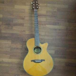 Cheap SX Acoustic Guitar Preamp